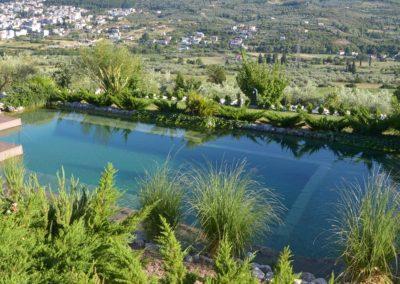 Φυσική πισίνα χωρίς χημικά-Περιβάλλον χώρος