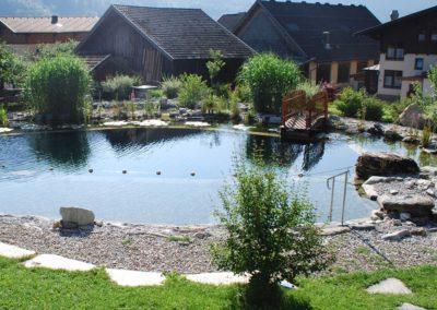 Φυσική πισίνα χωρίς χημικά-Ο περιβάλλον χώρος  συμμετέχει στην τελική εικόνα